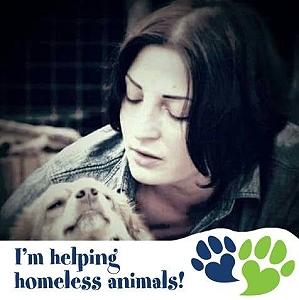 Anette Shelter in Rumänien - Tierrettung Rumänien